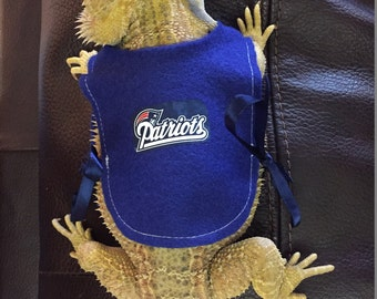Customizable Sports Jersey for a Bearded Dragon- Made to Order!
