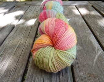 Happy Hippie - Hand Dyed Sock Yarn / One of A Kind Colorway