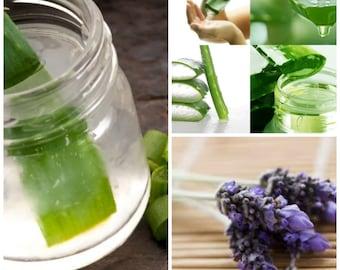 Soothing Sunburn Relief - All Natural - No Alcohol - Aloe Vera Gel, Lavender Essential Oil - 4 oz Bottle