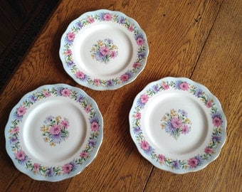 Foley Cornflower China Plates Set 3