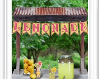 Lemonade Banner in hot pinks and yellows - perfect for a lemonade stand, party lemonade bunting