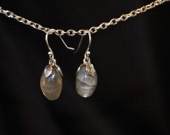 Black Moonstone Dangle Earrings