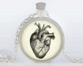 Anatomical heart  pendant Anatomical heart hecklace Anatomical heart jewelry