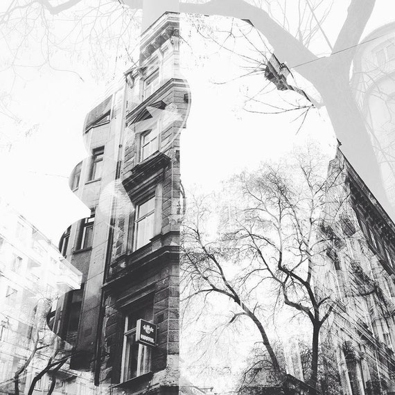 double exposure picture and original picture