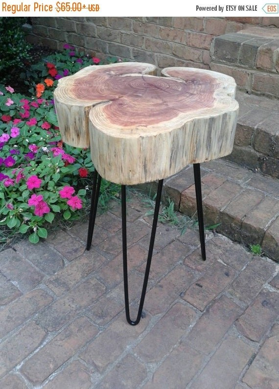 Thick red cedar cookie live edge table on black hairpin legs