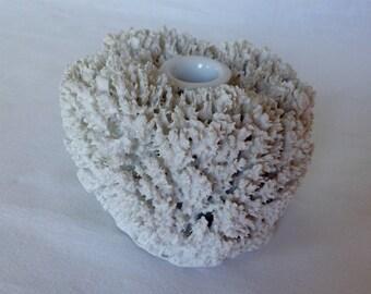 Marcel Wanders Sponge Vase for Moooi