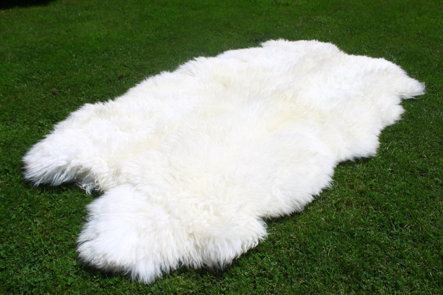 Sheepskin Rug White Sheepskin Rug Real By Naturalsheepskin