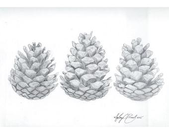 Pinecone trio