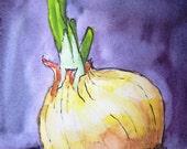 Yellow Onion, veggie still life, original watercolor and ink, kitchen art, onion art, small painting