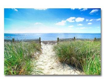 Cape cod Beach Path & Eel Grass   beach photo   Ocean art   Cape Cod photo   beach photography   wellfleet   beach photo   beach wall art  