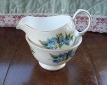 Queen Anne Bone China England - Vintage Creamer and Sugar Bowl Set - Blue Flowers with Gold Trim