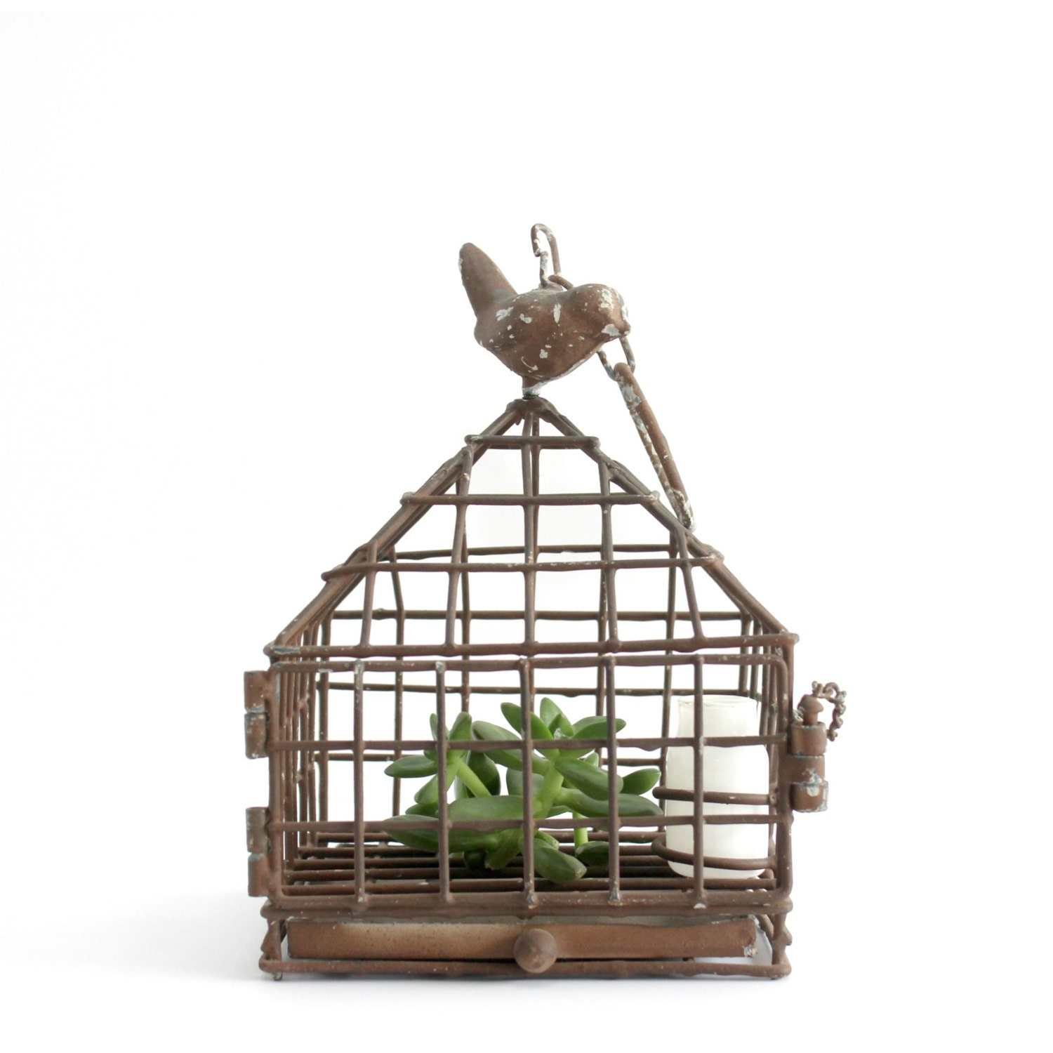 Ophelia & Co. Brundon Metal Decorative Bird Cage A lovely metal constructed birdcage is a fantastic option for decorating your gar den. It comes with pretty climbers surrounding the cage.