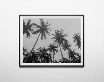 Palm Tree Photography, Palm Tree Print, Summer Prints, Beach Decor, Tropical Decor, Palm Tree Wall Art, Beach Photography, Black And White