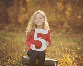5 Sign Photo Prop for Fifth Birthday Photo Shoot for Kids - Wooden Number Five Sign Photographer, Number 5 Sign (Item - NUM005)