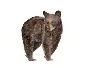 Bear Art Print, Black Bear Watercolor Painting, Woodland Animal Wall Art Print, Bear Illustration, Forest Animal Print, Young Bear Cub