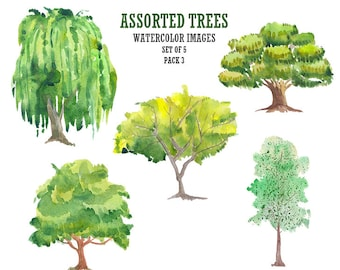Watercolor clip art Tree clipart Floral digital image Stock image