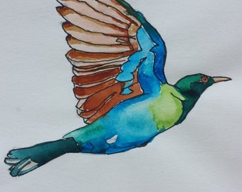 Original pen and watercolour drawing of flying bird