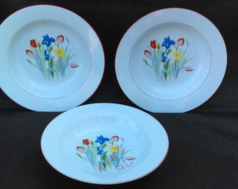 TIENSHAN by  PRELUDE China porcelain soup bowl Tulips Gift for her Gift for mother Gift for Birthday Made in ChinaO