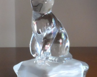 Endearing cat glass