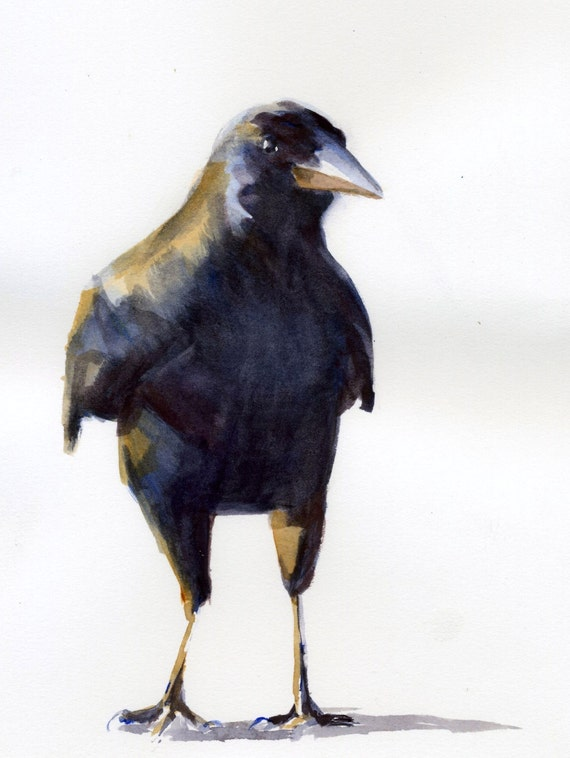 Curious Crow -- a signed print of a crow painting of a watercolor done by Columbia Gorge artist Bonnie White