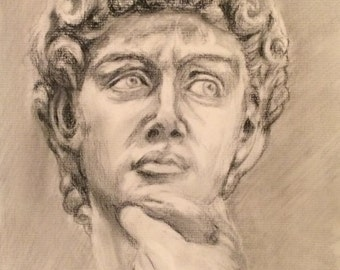 Portrait of David from Michelangelo's famous statue