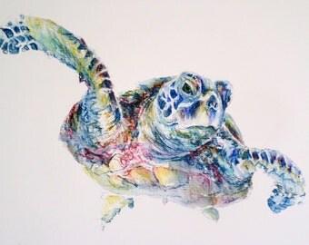Turtle illustration, turtle drawing, turtle painting, sea turtle painting, giclee print, sea turtle, swimming turtle painting