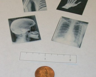 Miniature Doctor's Office X-Rays