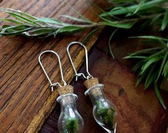 Moss Earrings, Plant Earrings, Terrarium Earrings, Bohemian Earrings, Botanical Jewellery