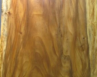 Monkeypod Live Edge Slabs-Exotic Hardwoods