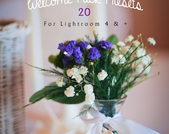 Welcome Pack 20 of my best sellers Lightroom Presets!