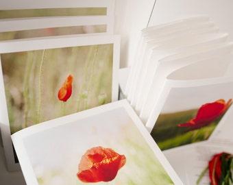 Premium Notecards, mini Collection of Poppies, Fine art prints, handmade artistic notecards set
