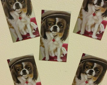 Magnet- Japanese Chin/Papillon in a pageboy hat