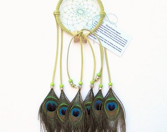Avocado Dream Catcher, Peacock Eyes Feathers