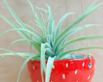 Handmade Ceramic Hanging Planter in red with white dots - Modern Ceramics - Ceramics and Pottery