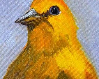 Original Bird Portrait, Yellow Feathers, Oil Painting, Small 4x6 Canvas, Tiny Wall Decor, Woodland Creature, Wild Animal