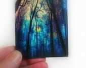 Winter fog, 2.50x3.50 inches, Aceo Original, photography, tree art, Fine art Photograph,  #Gina Signore #aceo original #Artist trading cards
