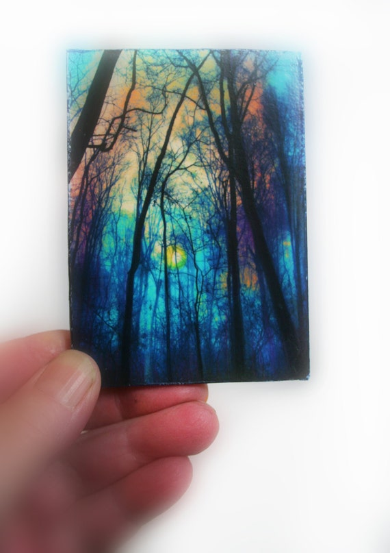 winter fog inches aceo original photography tree. Black Bedroom Furniture Sets. Home Design Ideas