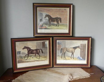 Vintage English equestrian colored engravings horses sorbet originally at horse track