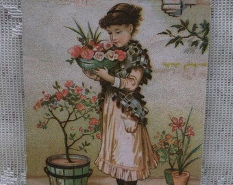 Pretty Girl in Patio Garden-Flowers-Blank Victorian Trade Card-Reward of Merit