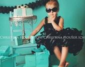 Stunning Little Black Tutu Dress, Birthday Tutu Set, Baby Girls Audrey Hepburn Tutu, Girls Tutu, Toddler Tutu, Tutu Skirt, Photo Prop