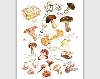 Mushroom print, Kitchen art print, Vegetable poster, Home decor, Fall print, Autumn decor, Botanical Wall art, Watercolor mushroom painting
