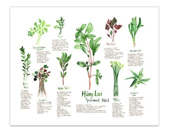 Vietnamese medicinal herbs, Healing herbs, Watercolor herb painting, Botanical illustration, Green Kitchen art, Garden, Kitchen wall art