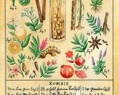 Botanical Zombie (Classic Tiki Cocktail) Print
