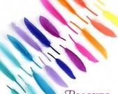 Bright Feather Blend - purple, pink, orange, aqua, lavender, yellow
