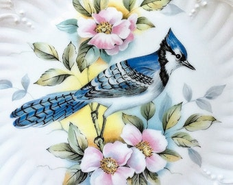 Bluejay Bird Plate Limoges France Porcelain Collectible Fine China Blue Jay Decorative Cabinet Plate Gift For  Bird Enthusiast Ornitholigist