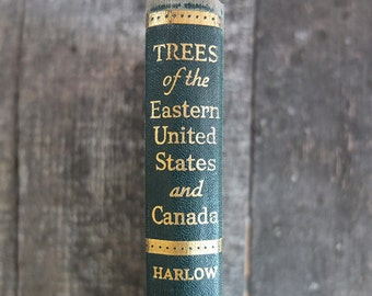 Vintage 1942 Trees of the Eastern United States and Canada Guide Book / Tree Identification Book / Nature Guide Book
