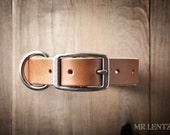 Leather Dog Collar, Dog Collar, Leather Collar, Pet Collar 075