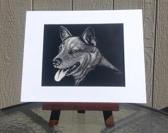 Original Scratchboard Drawing, Black and White Healer Dog etching