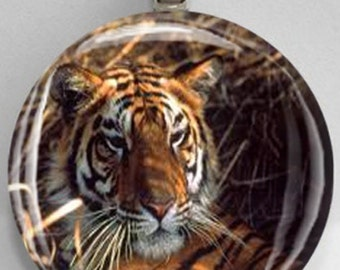 Interchangeable Magnetic Tiger #1 Pendant Necklace Handmade
