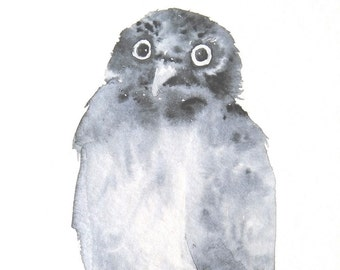 Owl Original Watercolor Painting
